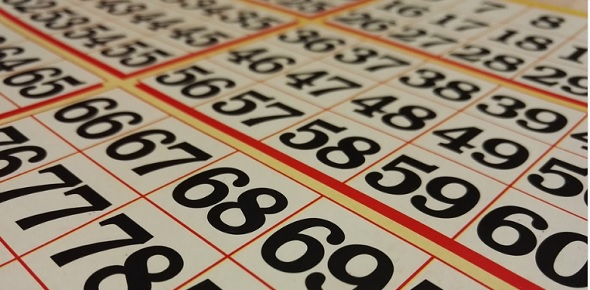 Bingo sports betting uganda fixture universe cs go betting fail compilation